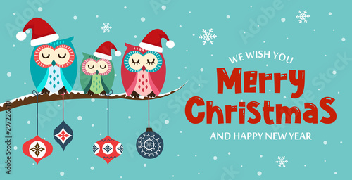 Photo Stands Owls cartoon Merry Christmas and New Year card on Christmas background with cute owls. Vector illustration.