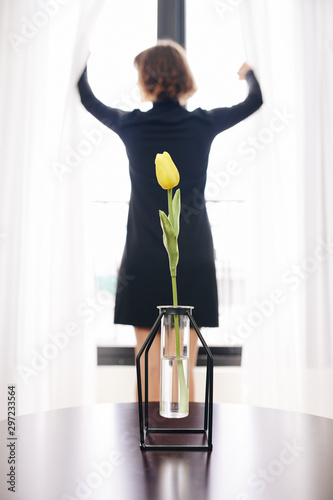 Test-tube looking vase with beautiful yellow tulip and woman opening curtains in background