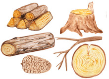 A Large Set Of Wooden Elements - Stump, Firewood, Cones, Branches, Logs And Round Saw Cuts. Aqua Illustration For Prints, Design And Cards. Hike And Walks, Eco Style. Rustic