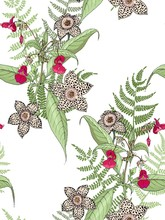 White Background With Balsam Flowers And Fern.Seamless  Floral Realistic