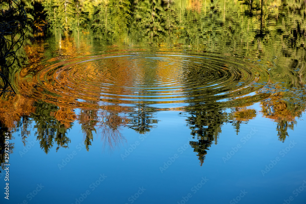 Fototapety, obrazy: Reflection of the autumn forest in the mirror of the lake