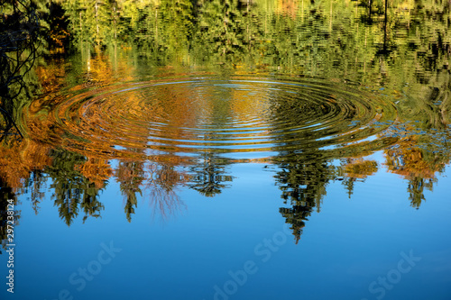 Reflection of the autumn forest in the mirror of the lake - 297238124
