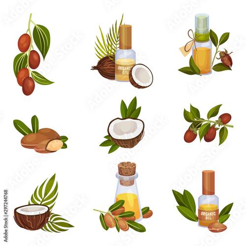 Jojoba and Coconut Organic Oil Production Vector Illustrated Set Canvas-taulu