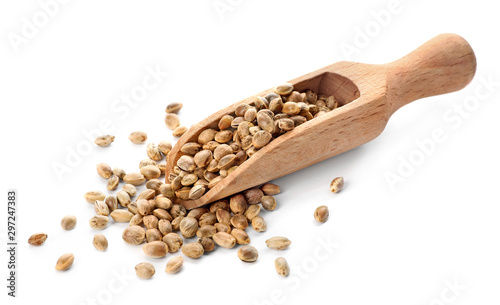 Wooden scoop with hemp seeds on white background Canvas Print