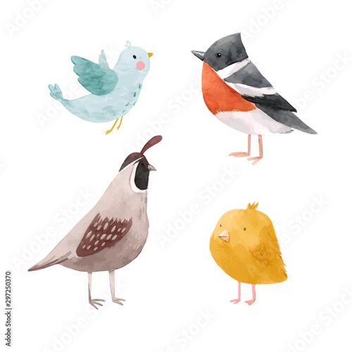Cute vector watercolor chick lark quail bird illustration set for children print