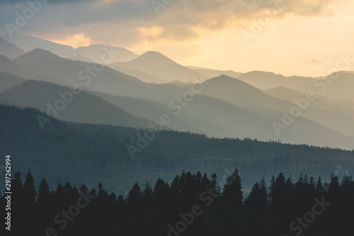 Foto  Forest under hills and mountains at sunset