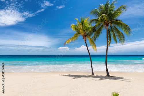 Obraz Tropical white sand beach with coco palms and the turquoise sea on Caribbean island. - fototapety do salonu