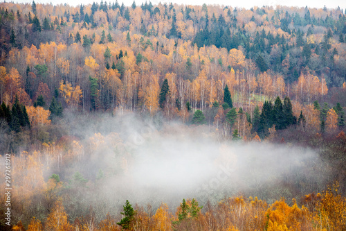 Foto auf Gartenposter Lachs Fog moving above forest in autumn, beautiful nature