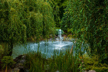 Fountain In The Garden Among T...