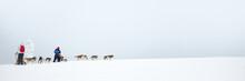 Husky Dog Sledding In Lapland,...