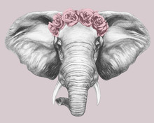 Portrait Of Elephant With Flor...