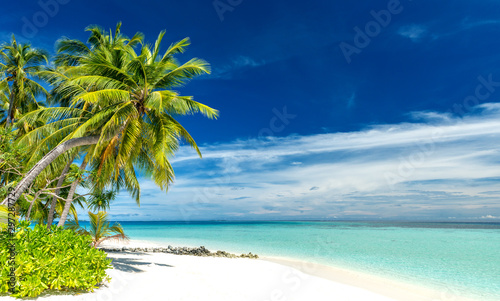 Pinturas sobre lienzo  tropical paradise beach with white sand and coconut palm trees