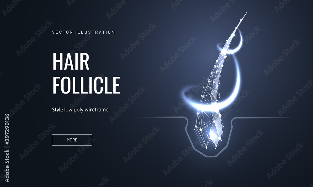 Fototapeta Hair follicle treatment low poly landing page template