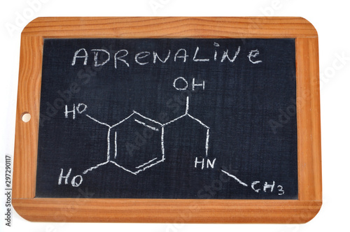Chemical formula of adrenaline on a school slate Canvas Print
