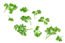 Curly Parsley Isolated On A Wh...