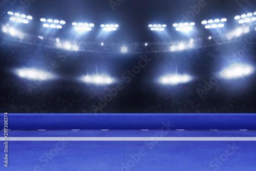 Karate tournament arena, sport concept Canvas Print