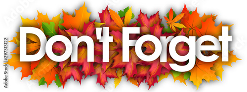 Fotografía  Don't Forget word and autumn leaves background