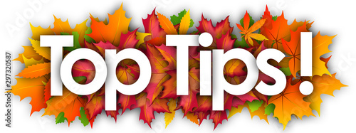 Top Tips word and autumn leaves background Canvas Print