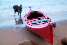 Kayak On A Beach With A Dog Ru...