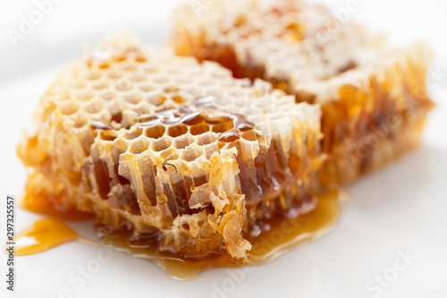 honeycomb on white plate on ceramic background Canvas Print