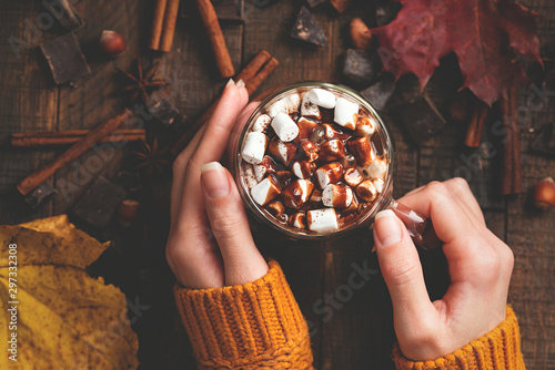 Spoed Foto op Canvas Chocolade Hot Chocolate With Marshmallows And Chocolate Sauce In Female Hands On Wooden Background. Top View. Warm Cozy Drink For Autumn Or Winter Season. Comfort Food Concept