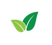 Green Leaves Vector Icon Desig...