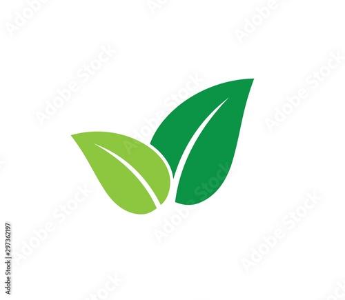 Fototapeta green leaves vector icon design on white background. obraz