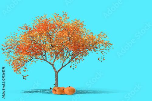 Foto auf Gartenposter Turkis Autumn