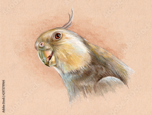 Portrait of a white-faced cockatiel Canvas-taulu