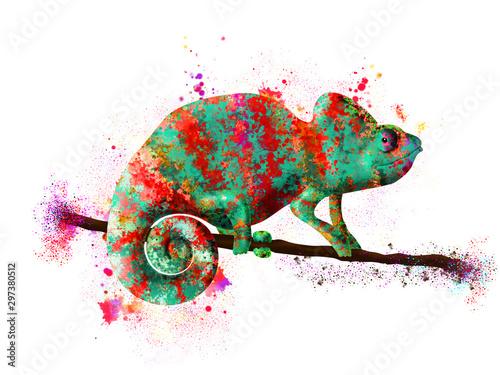 kameleon-pomalowany-na-jasne-kolory