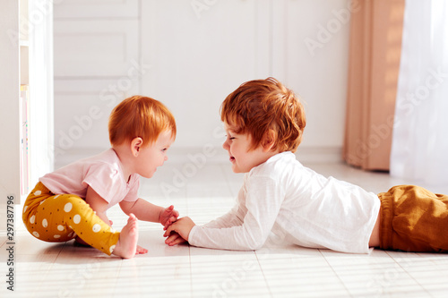 Fototapeta cute happy redhead siblings, brother and sister having fun together, playing at