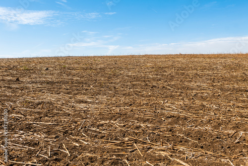 plowed field and blue sky Canvas Print