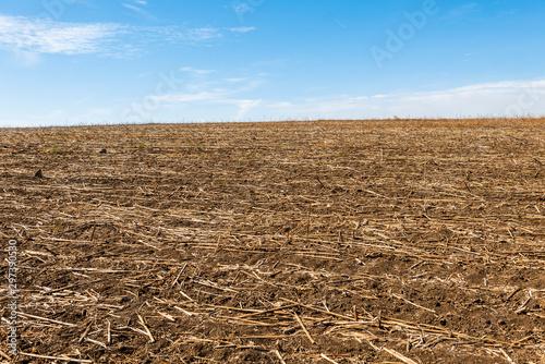 plowed field and blue sky Wallpaper Mural