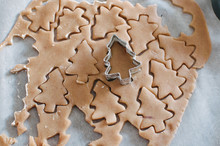 Dough Of Gingerbread Cookie With Tree Shape