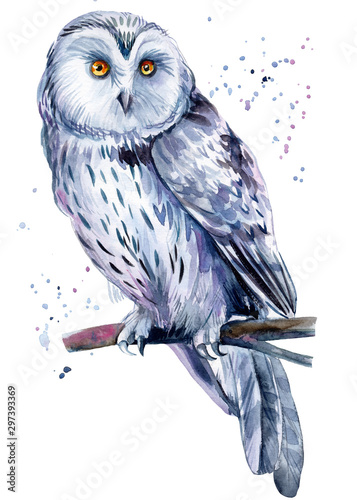 Photo Stands Owls cartoon Beautiful painting with a bird, watercolor illustration, white owl and paint splashes. Poster, postcard.