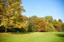 Autumn In Stirin Castle Park ...