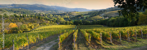 Foto  Beautiful vineyard in Chianti region near Greve in Chianti (Florence) at sunset with the colors of autumn