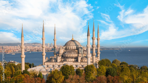 The Sultanahmet Mosque (Blue Mosque) - Istanbul, Turkey Wallpaper Mural
