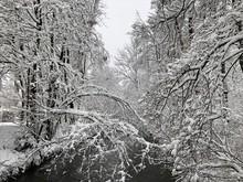 Eingeschneit: Winterlandschaft...
