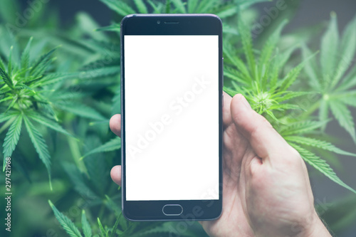 Canvas Print Smartphone with white screen for mock up , chromakey against the background of c
