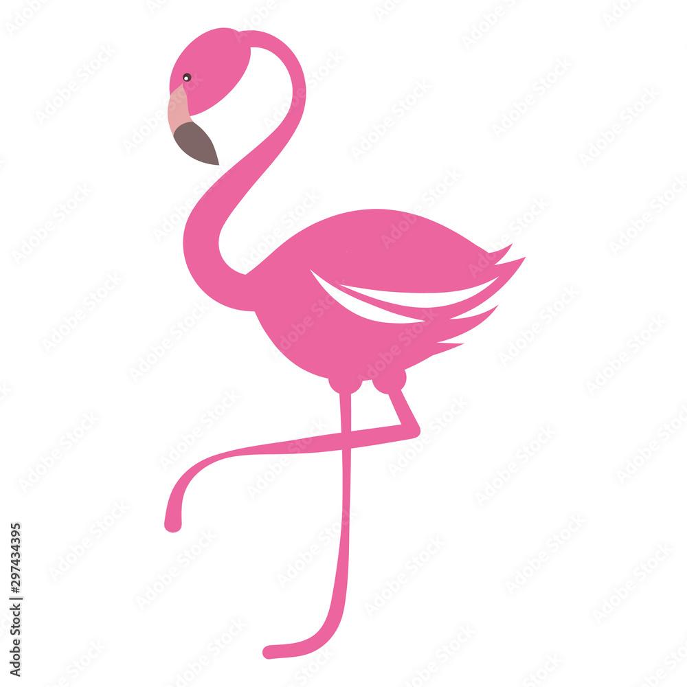 Fototapety, obrazy: Pink flamingo