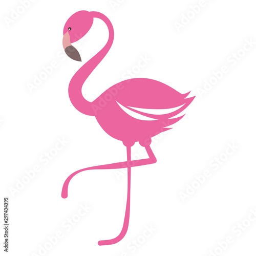 Photo  Pink flamingo