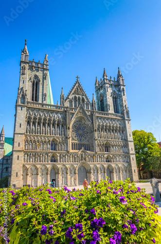 Fotobehang Noord Europa Nidaros Cathedral (Nidarosdomen) in beautiful city Trondheim, Norway