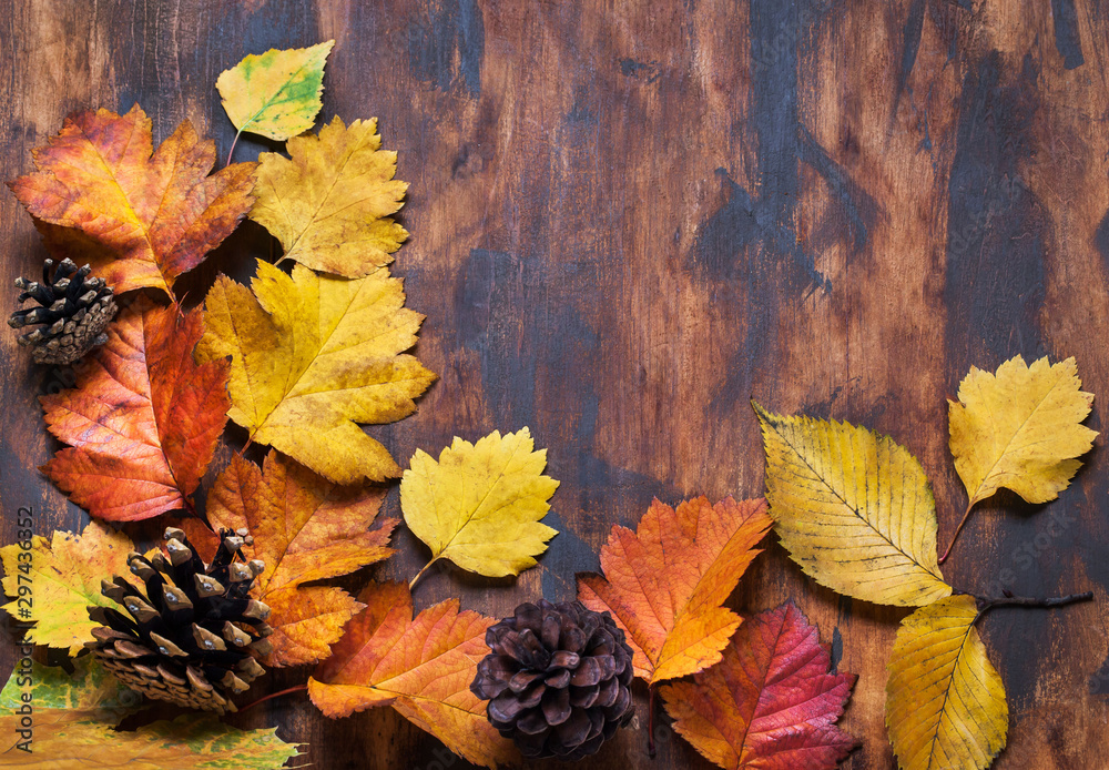Fototapety, obrazy: Fallen leaves on wooden background, top view, copy space