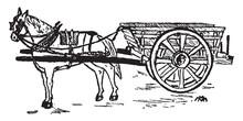 Horse And Cart, Vintage Illustration.