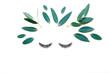 Female face made of false eyelashes and eucalyptus leaves  on white background