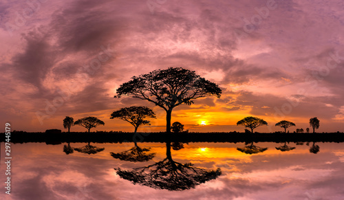 panorama-silhouette-tree-and-mountain-with-sunset-tree-silhouetted-against-a-setting-sun-reflection-on-water-typical-african-sunset-with-acacia-trees-in-masai-mara-kenya