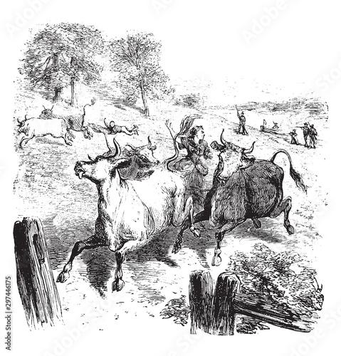 Vászonkép Hannah Erwin Israel Saving the Cattle,vintage illustration