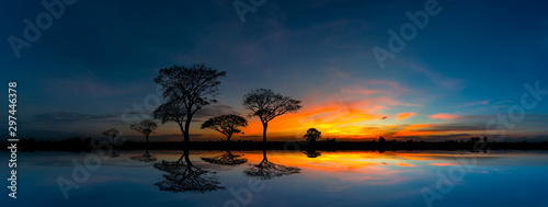 Tuinposter Zee zonsondergang Panorama silhouette tree and Mountain with sunset.Tree silhouetted against a setting sun reflection on water.Typical african sunset with acacia trees in Masai Mara, Kenya.