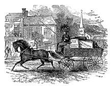 Carriage & Horse, Vintage Illustration.